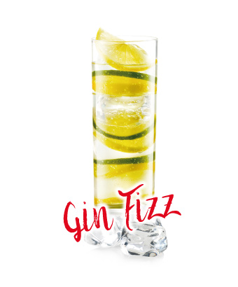 files/2017/06/14-02-gin-fizz.jpg
